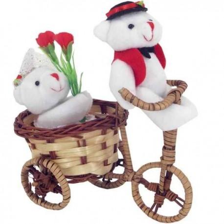 Zaľúbený mackovia na bicykli